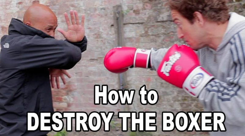 master wong how to destroy boxer