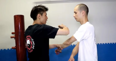 Wing Chun vs Jeet Kune Do: A Short Theory