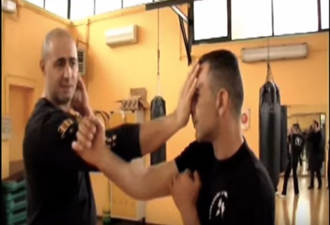 Wing Chun High Skill Natural fighting by sifu Evangelos